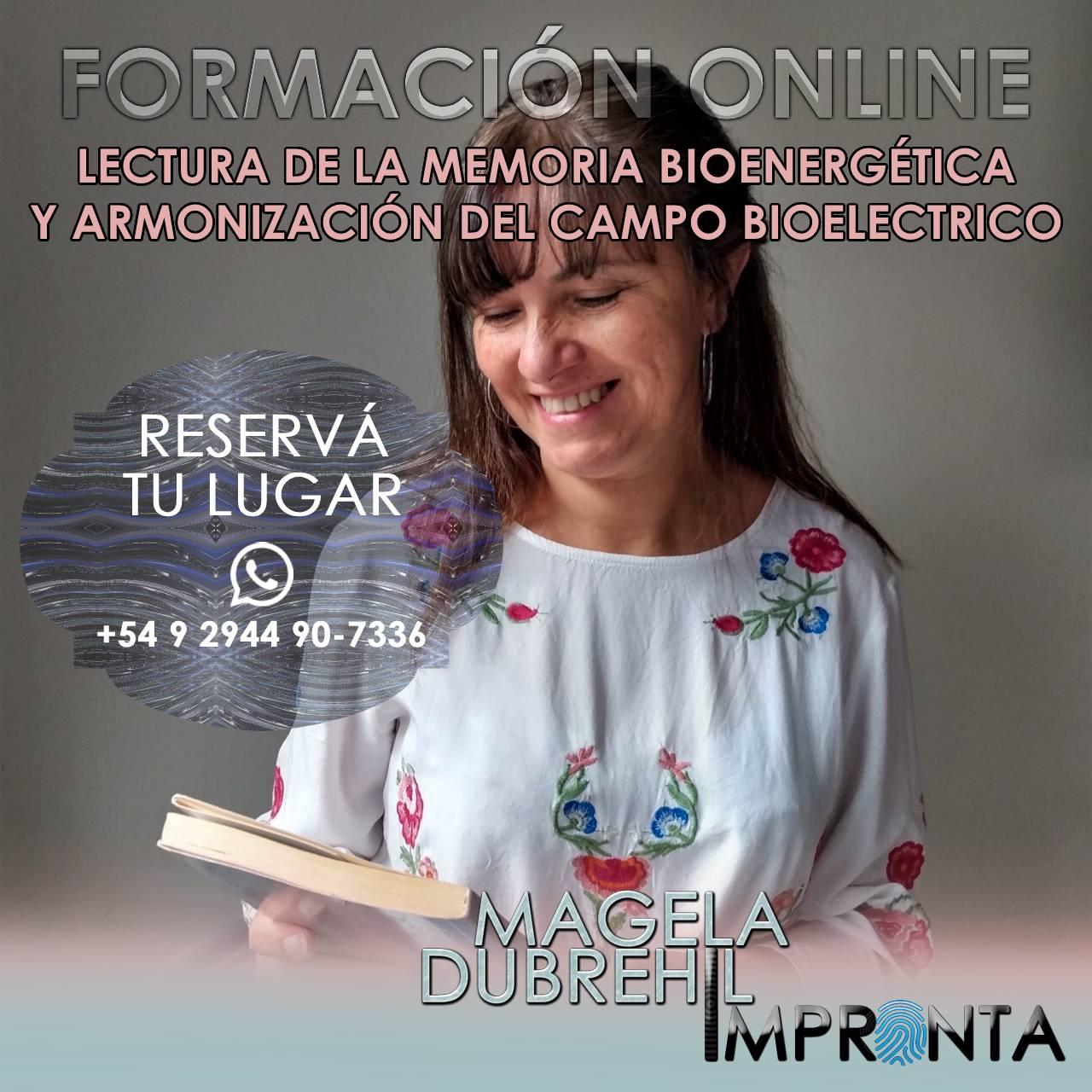 LECTURA DE LA MEMORIA BIOENERGÉTICA Y ARMONIZACIÓN DEL CAMPO BIOELECTRICO